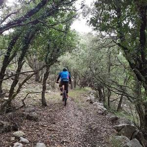 ruta bici montaña en la carrasqueta